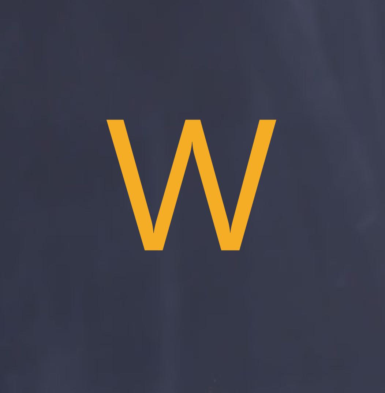 WiseDecisionMaking Logo